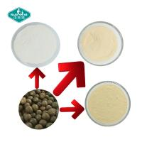 China Sweetener Mogrosides 80% Monk Fruit Extract Powder in Milk White Powder of Herbal Extract/Plant Extract on sale