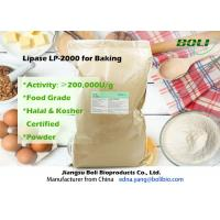 Food Grade Powder Lipase Enzyme LP-2000 High Efficient For Bakery 200000 U / g Manufactures