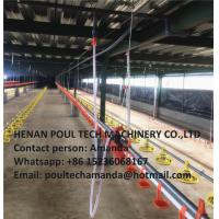 China Chicken House Broiler Chicken Deep Litter System & Flooring Breeding System with Nipple Drinking Line for Chicken Feed on sale