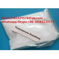 Test Enantate Pharmaceutical Grade Muscle Growth Testosterone Enantate Powder CAS 315-37-7
