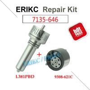 China ERIKC 7135-646 delphi injector repair kit nozzle L381PBD valve 9308-621C diesel injection parts for EJBR05102D DACIA on sale