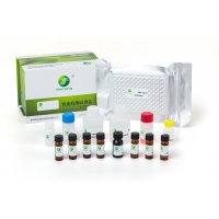 Buy cheap LSY-10026 Melamine ELISA Detection Kit for milk, milk powder, candy, butter from wholesalers