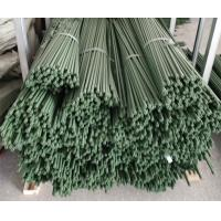 Durable Plant Garden Support Green PE Coated Garden Stake Manufactures