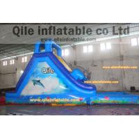 Quality dolphins inflatable wet & dry slide with pool,pool can removed ,double wave slide for sale