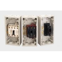 Mini IP66 Outdoor screwed Weather Protected isolator Switch with double / triple pole Manufactures