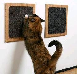 Cat Scratch/cat toy/pet toy Manufactures