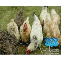 poultry netting Manufactures