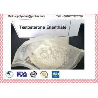 CAS 315-37-7 Testosterone Enanthate Powder Primoteston Depot Muscle Building Manufactures