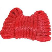 polyester double solid diamond 3-strand twist rope code line Manufactures
