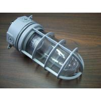 TOPELE Energy Saving Outdoor Aluminum Vapor Proof Lights, Explosion-proof Lights Ip65 For Oil Platform Manufactures