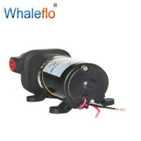 China Whaleflo 12V DC small electric water pump on sale