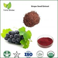 grape seed extract polyphenols,grape seed extract 95%,grape seeds extract proanthocyanidin Manufactures