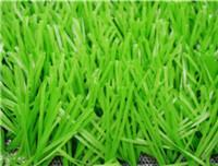 China Sports Grass Football-WF-W10000 Light wholesale
