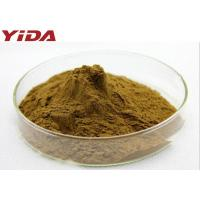 Natural Pentaphyllum Tea Gynostemma Extract Powder 99% Anti Aging Anti Cancer Manufactures
