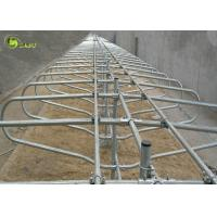 Double Style Hot Dip Galvanized Cow Headlock Farm Stalls Cattle Farm device Manufactures