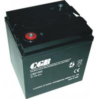 100AH 6 V Rechargeable Battery Free Maintenance With CE Standards Manufactures