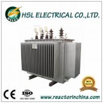 10kv 220v oil immersed distribution transformer Manufactures