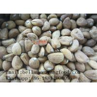 China Chinese factory price Dehydrated Garlic powder/flakes/granular on sale