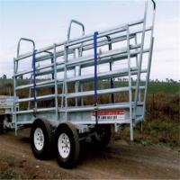 Adjustable Cattle Loading Ramp 50mm X 50mm X 2.00mm Frame 1.5m  Overall Height Manufactures