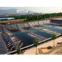 China Hdpe geomembrane liner on sale