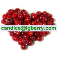 Importted Cranberry fruit100% Pure Cranberry Extract powder Manufactures