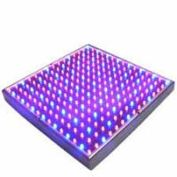 Full Spectrum SMD Indoor LED Grow Lights 50 Watt For Breeding / Farmland , 315x310mm Manufactures
