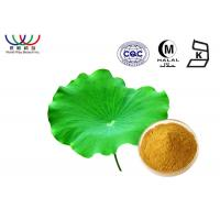 China Nelumbo Nucifera Leaves Extract Powder , Pure Natural Botanical Extracts on sale
