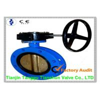 Large Diameter U Type Butterfly Valve DN50 - DN1200 with gear box Manufactures