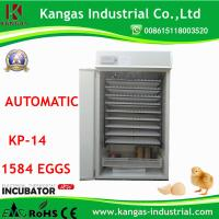 China Competitive Price and Automatic Chicken Quail Egg Incubator for Hatching (KP-15) Incubator Spare Parts on sale