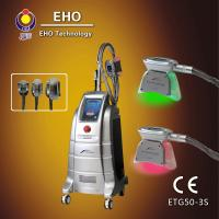 3 handles fat freezing weight loss slimming cryolipolysis machine Manufactures