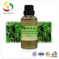 China wholesale bulk organic houttuyniae essential oil Manufactures