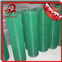 China vinyl coated welded wire mesh on sale