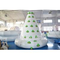 Kids Inflatable Water Sport , Large Inflatable Water Climbing Wall Manufactures