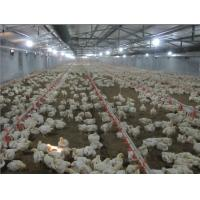 China Poultry Farm Equipment on sale