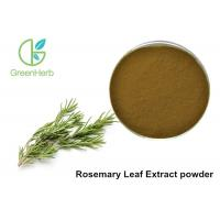 5% Rosmarinic Acid Rosemary Leaf Extract Powder Brown Yellow Color Manufactures