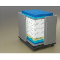 Cooler Cold Chain Packaging Box With EPP Manufactures