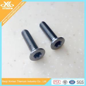 High Quality and Best Price Metric Gr5 Titanium Torx Flat Head Screws