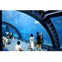 Shopping mall decorated crylic tunnel ,  Fish Tank Aquarium tunnels large Manufactures