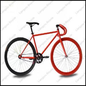 China fixed gear bike single speed bike on sale