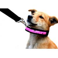 Quality Super Bright LED Flash Puppy Collar for sale