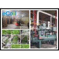 Low Temperature Multipurpose Cold Storage For Vegetable Processing PU Panel for sale