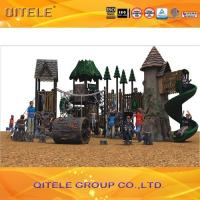 Natural Children Play Area Equipment , Resin Materail With Galvanized Steel Parts Manufactures