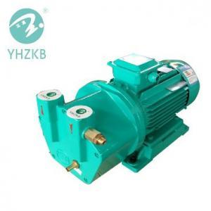 SK-1.2 3kw single stage cast iron material liquid ring vacuum pump Manufactures
