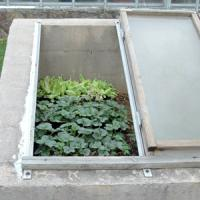compact cold frame with UV protected panels Manufactures