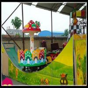 New  amusement park rides kids track rides double wave sliding car fairground rides Manufactures