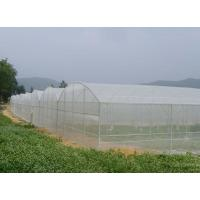 Gutter Height 2-6m Gothic Arch Greenhouse , Shade Net Greenhouse For Ecological Restaurant