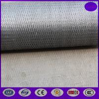 China 20mm x 20 gauge  Galvanized Poultry Netting Fencing / Chicken Houses Runs on sale