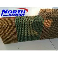 China High Effiency Cooling Pad/Evaporative Cooling Pad For Green/Poultry House/Industry for sale