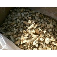 Light Yellow Air Dried Vegetables Dried Burdock Max 10% Moisture With Round Cut Size Manufactures