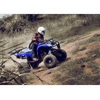 Quality Blue 250CC Utility ATV Quad Bike 4 Wheel , Five Speed With Reverse for sale
